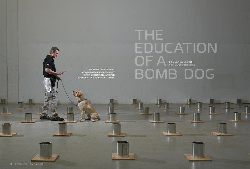 Smithsonian Magazine —<br>Bomb Dog Training School